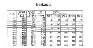 berkaoui-4